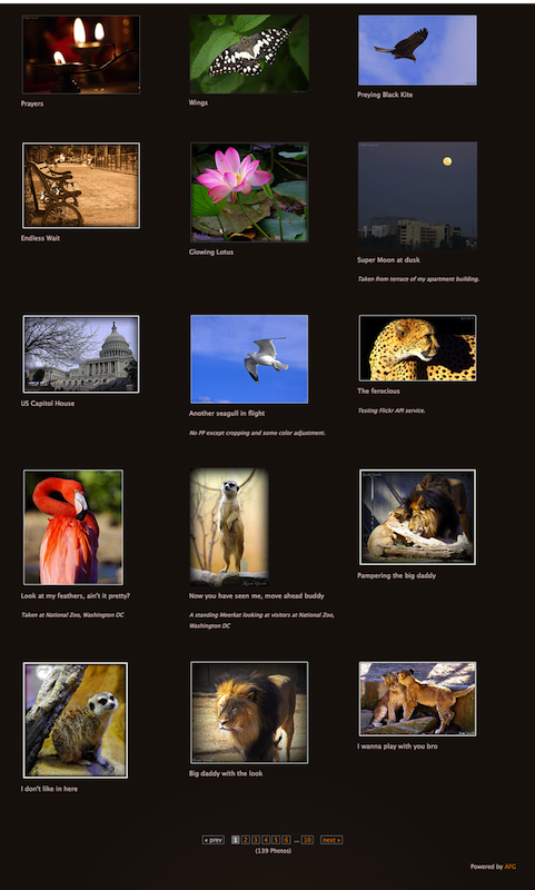 awesome-flickr-gallery-plugin screenshot 3