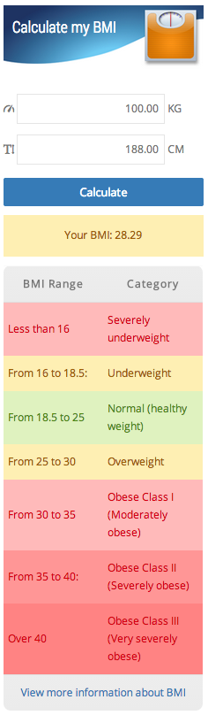 bmi-imc-calculator screenshot 2