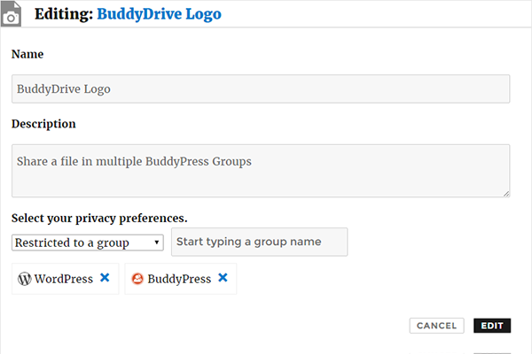 buddydrive screenshot 1