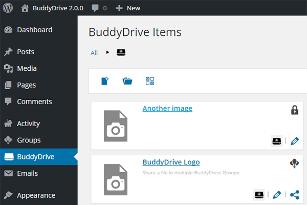 buddydrive screenshot 5