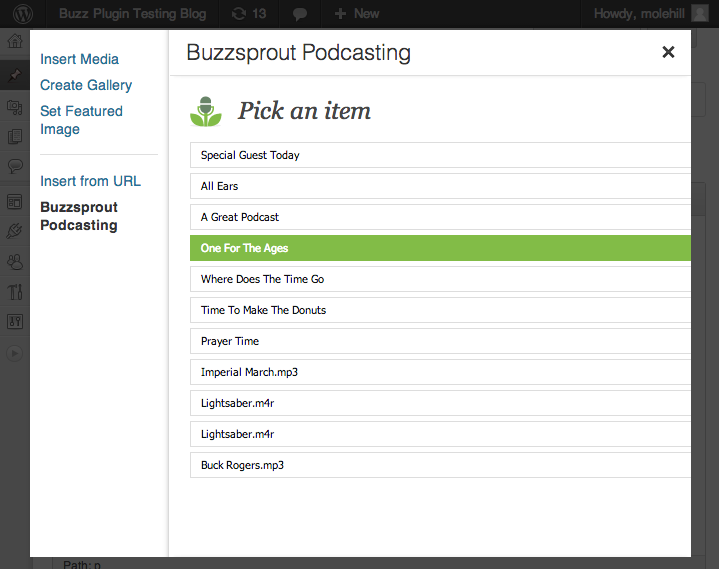buzzsprout-podcasting screenshot 1