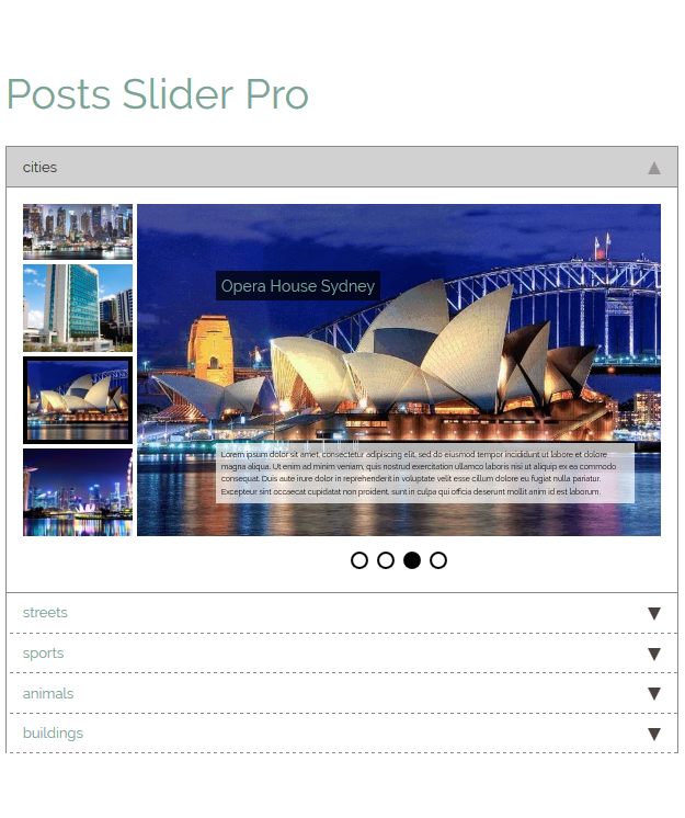 category-posts-slider-pro screenshot 10