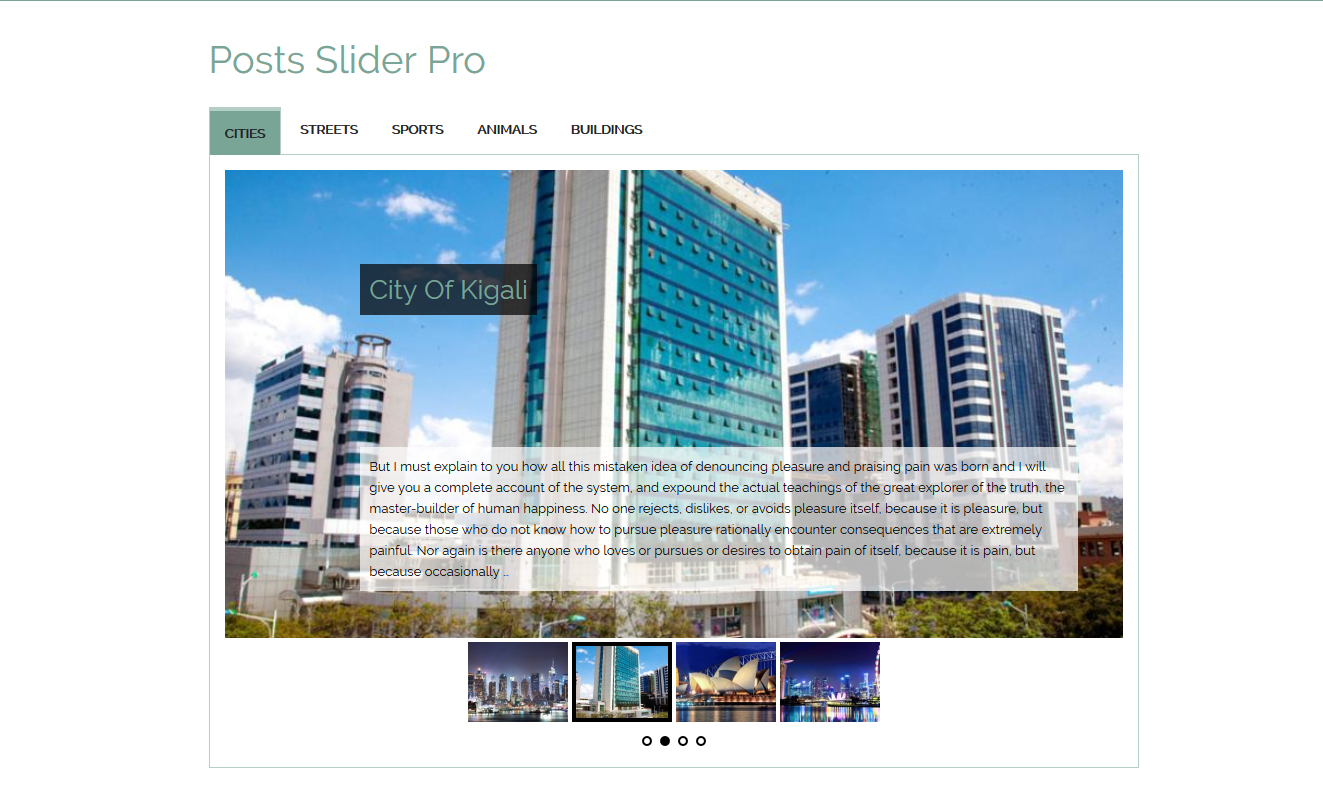 category-posts-slider-pro screenshot 4