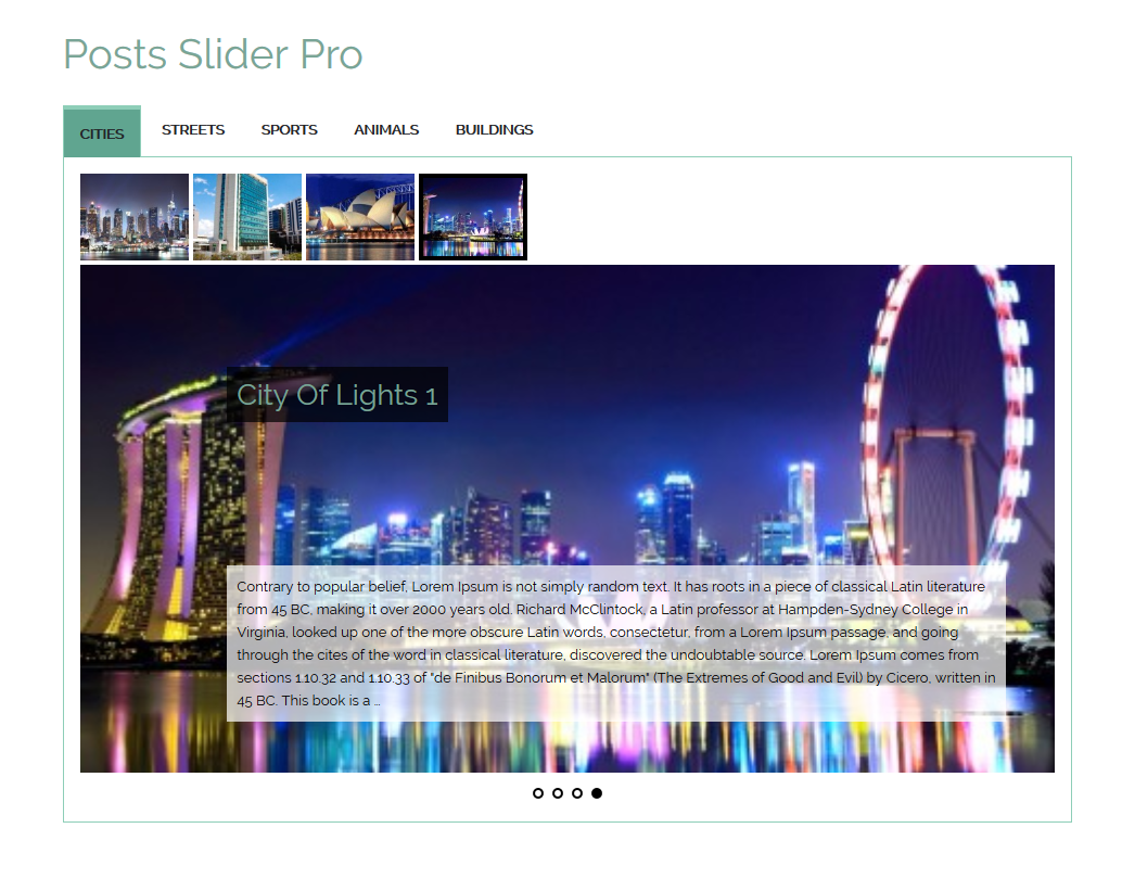 category-posts-slider-pro screenshot 7