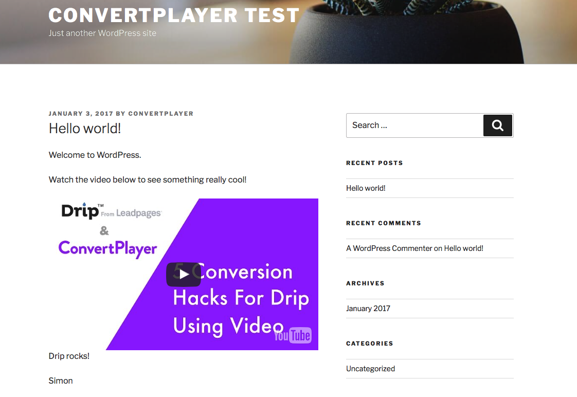 convertplayer-video-lead-capture-player-for-youtube-vimeo screenshot 6