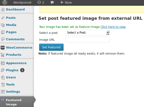 external-url-to-post-thumbnail screenshot 2