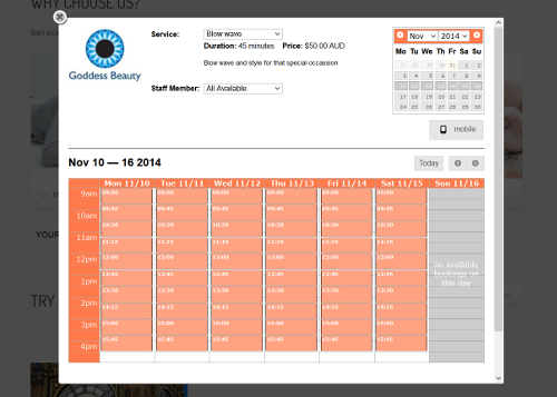 ezyonlinebookings-online-booking-system screenshot 1