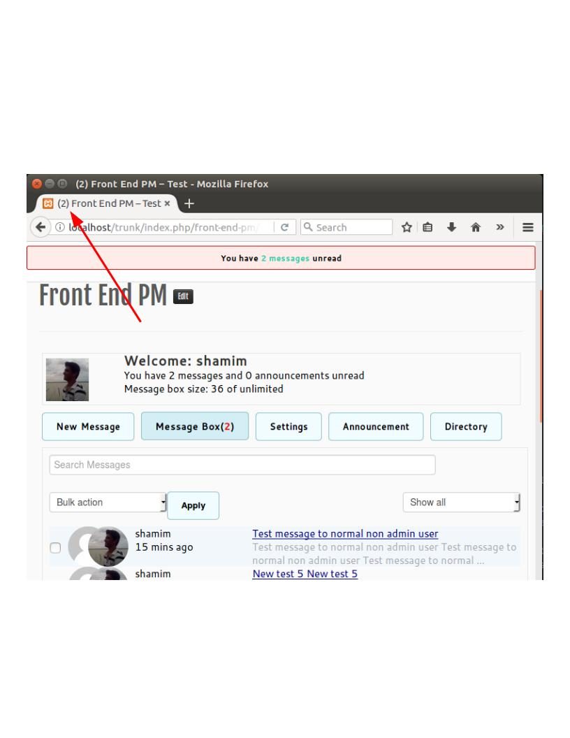 front-end-pm screenshot 3