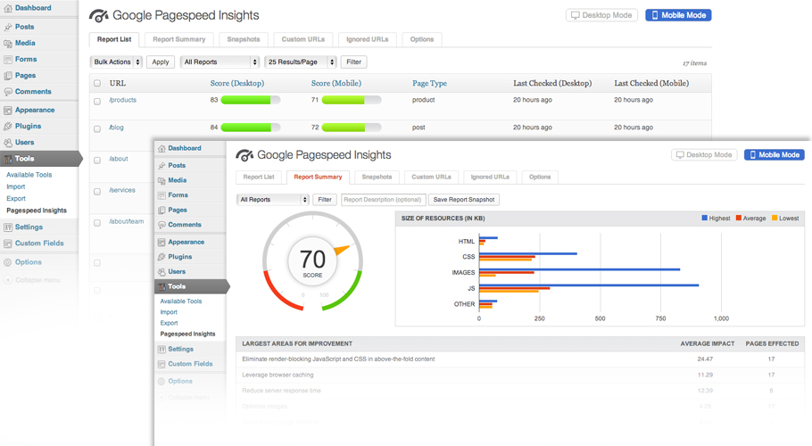 google-pagespeed-insights screenshot 1