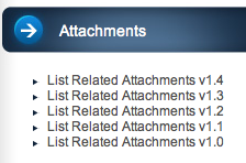 list-related-attachments-widget screenshot 2