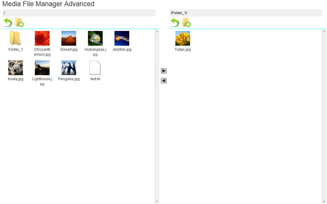 media-file-manager-advanced screenshot 1