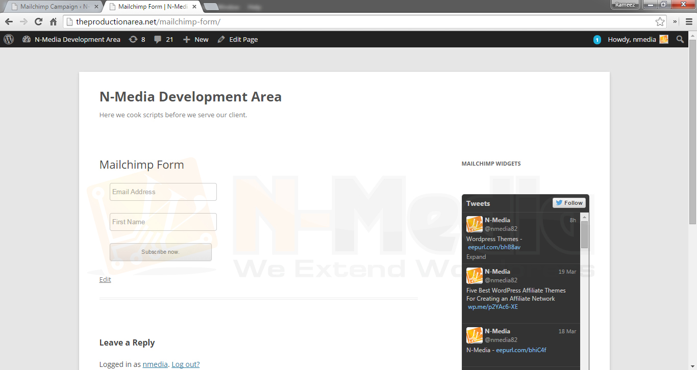nmedia-mailchimp-widget screenshot 4