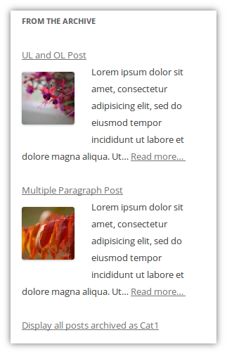 posts-in-sidebar screenshot 4