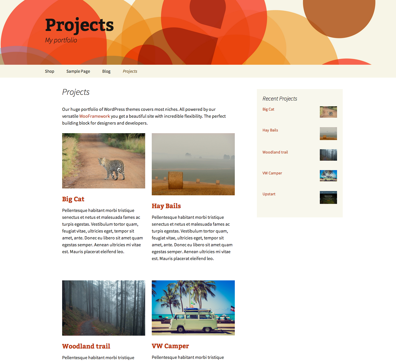 projects-by-woothemes screenshot 1