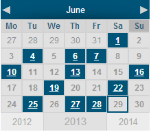 spider-event-calendar screenshot 2