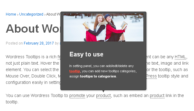 wordpress-tooltips screenshot 1