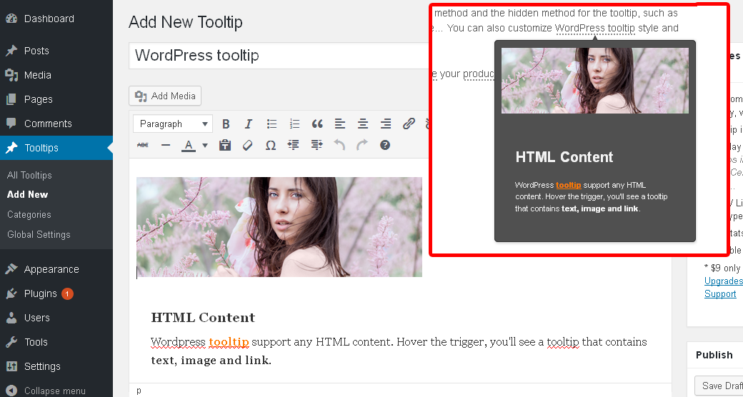 wordpress-tooltips screenshot 3