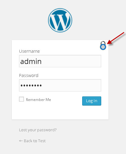 wp-admin-graphic-password screenshot 3