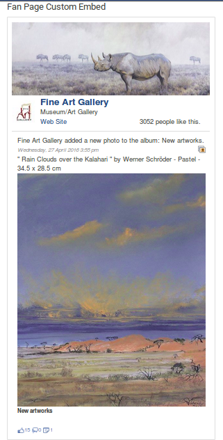 wp-embed-facebook screenshot 2