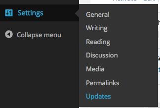 wp-updates-settings screenshot 3
