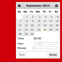 Date & Time Picker