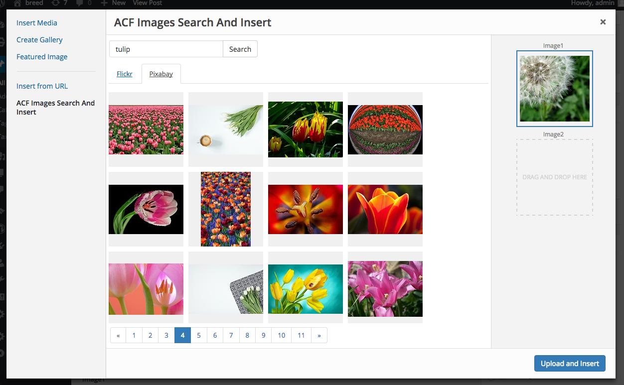 Search result in WP Media modal