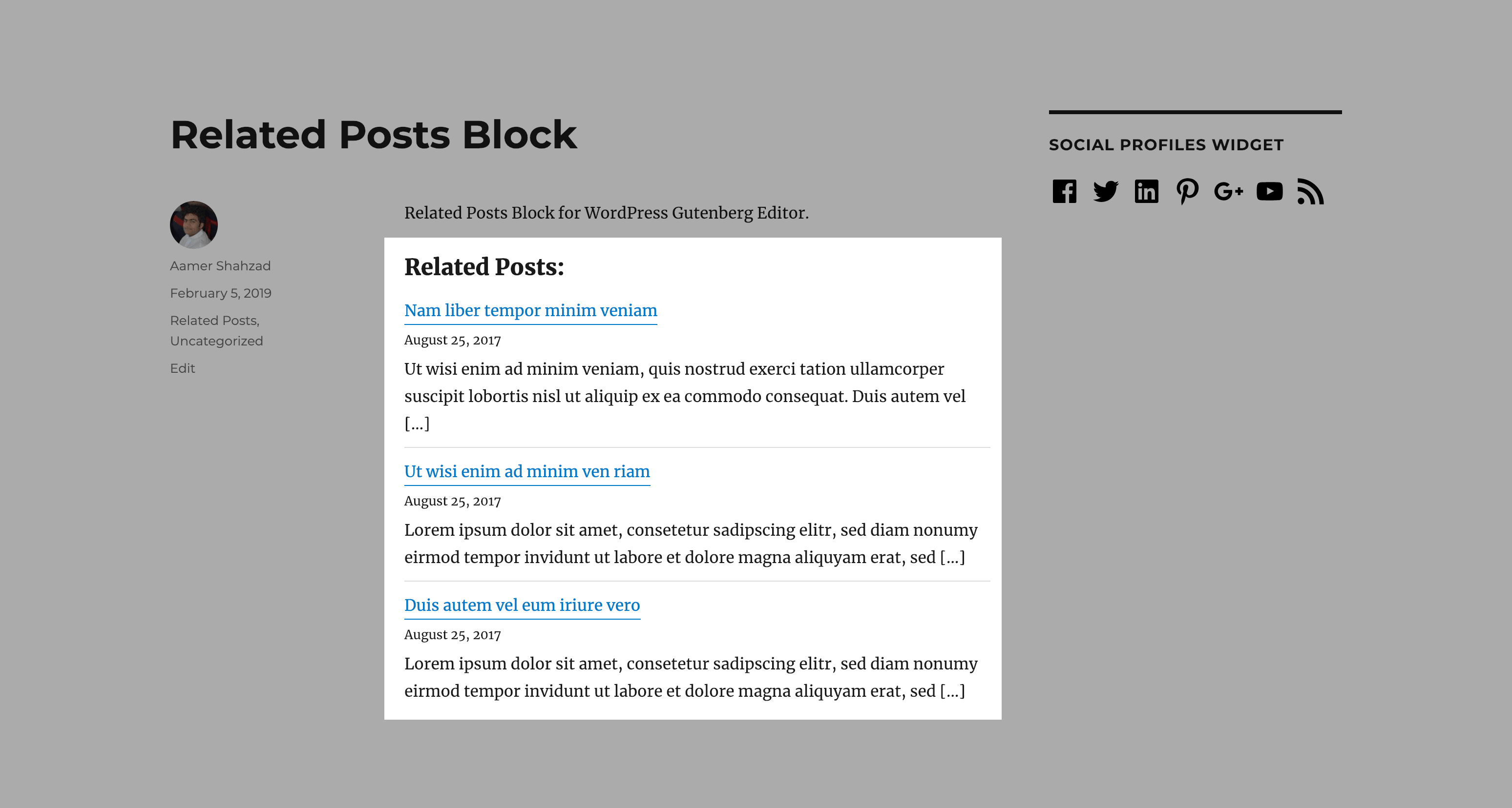 "Frontend view of ""Related Posts""."