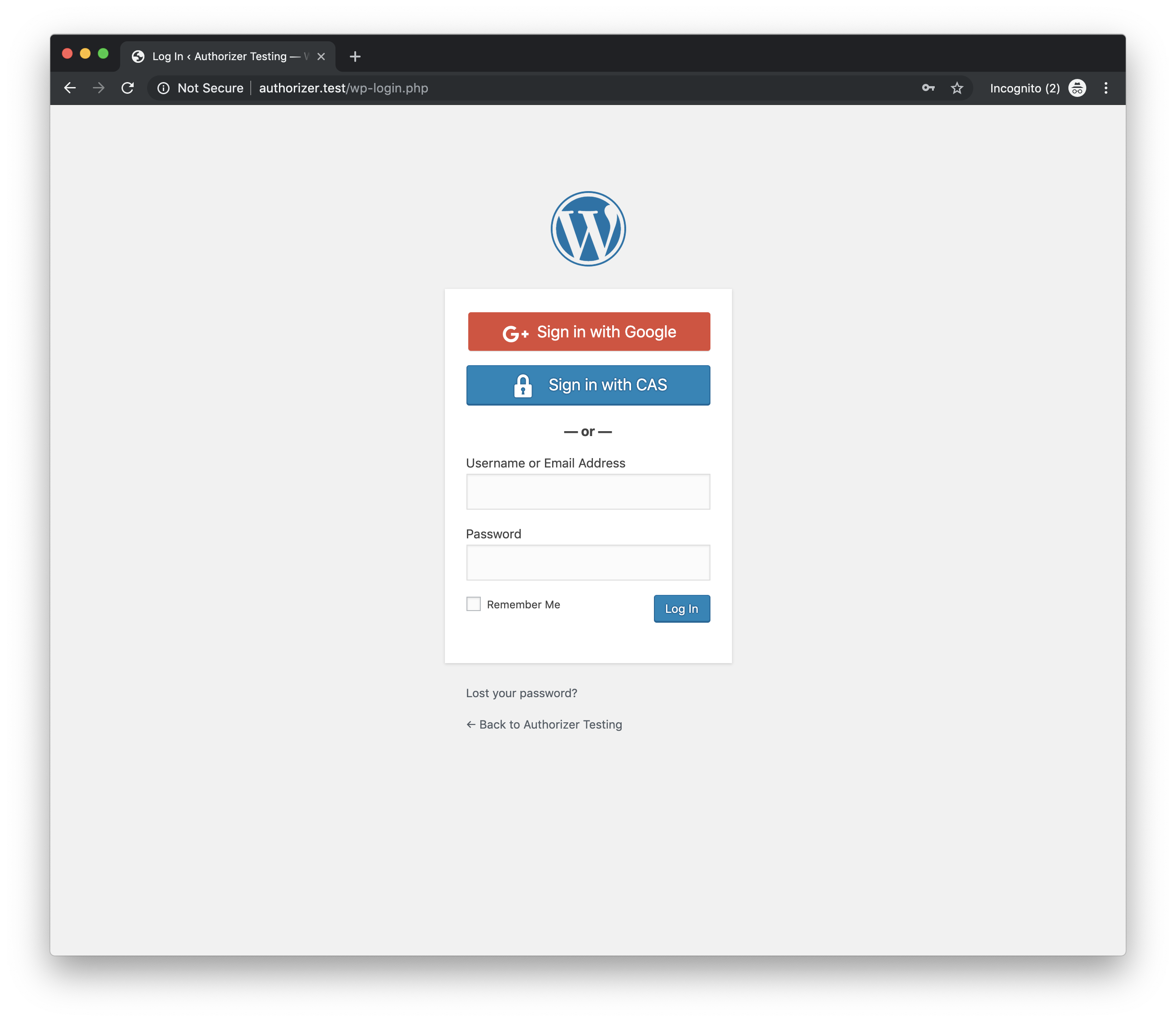 WordPress Login screen with Google Logins and CAS Logins enabled.