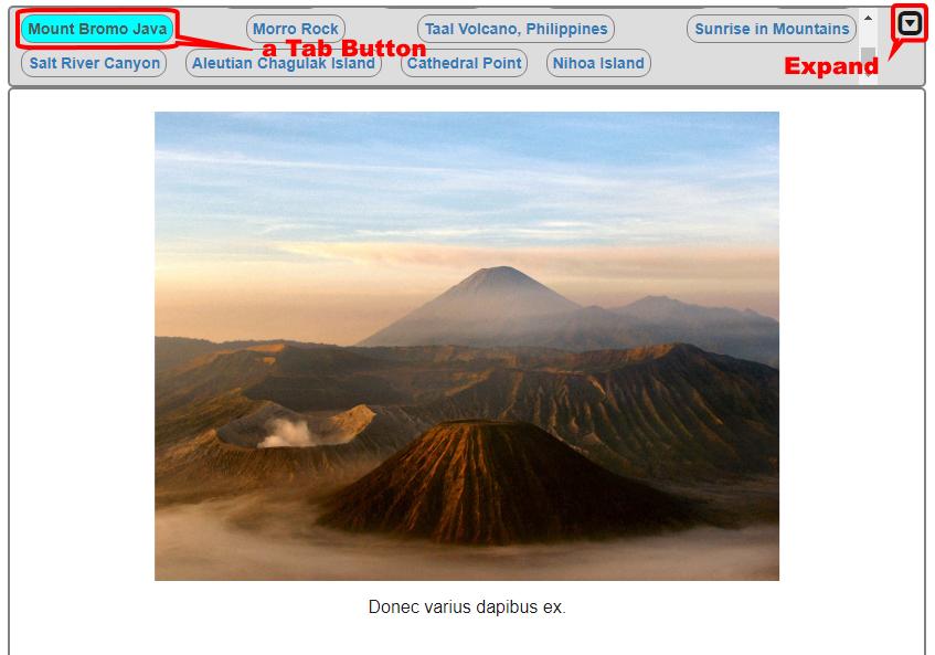 "<a href=""http://docs.magentacuda.com/#view-tabs"">Tabbed Gallery</a>"