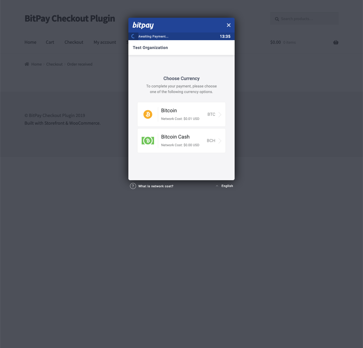 """BitPay hosted invoice - modal option. Displayed to the user after he clicked the """"Pay with BitPay"""" button"""