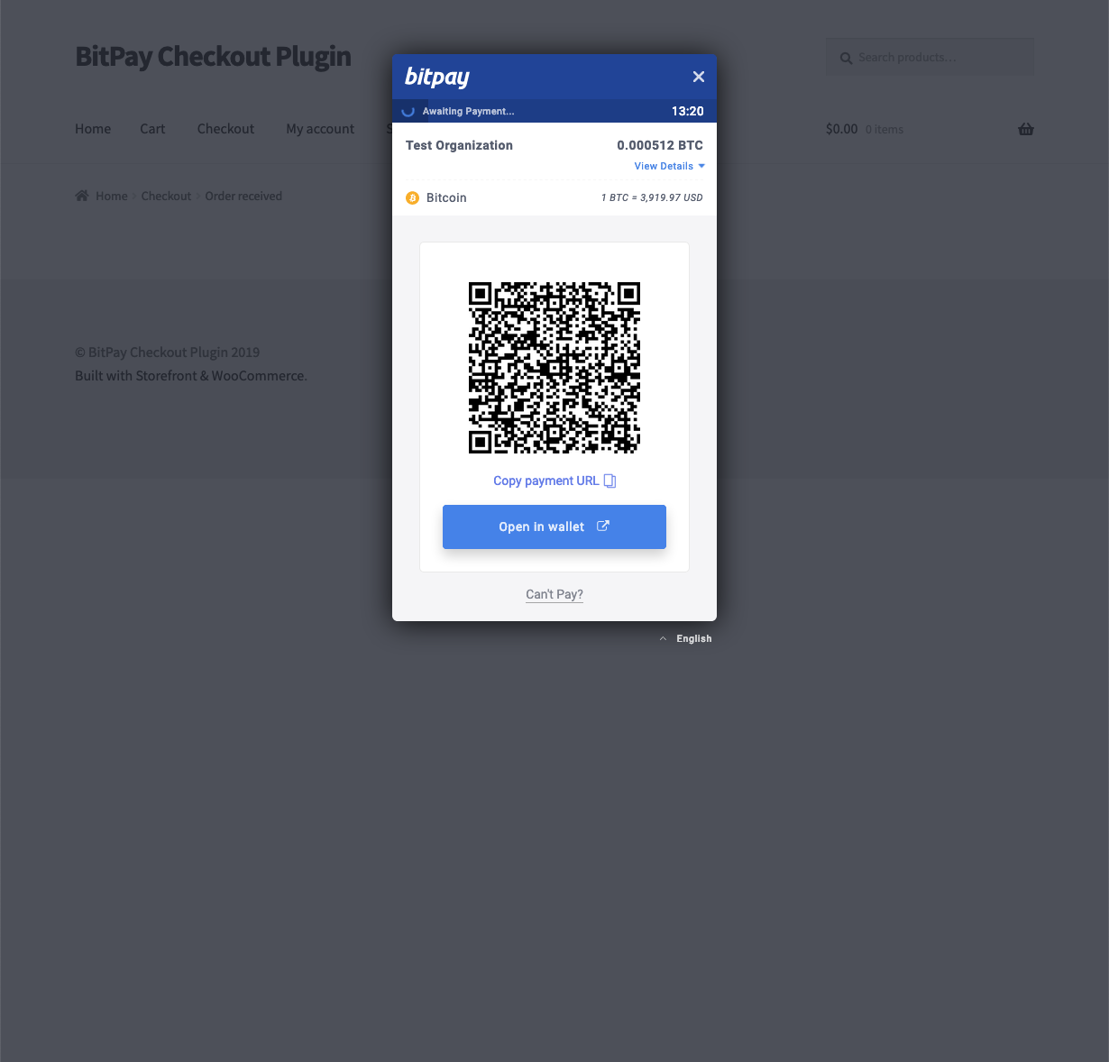 BitPay hosted invoice - cryptocurrency selected