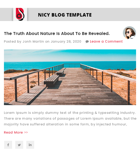 Blog Designer with 'Nicy' Blog Template Layout