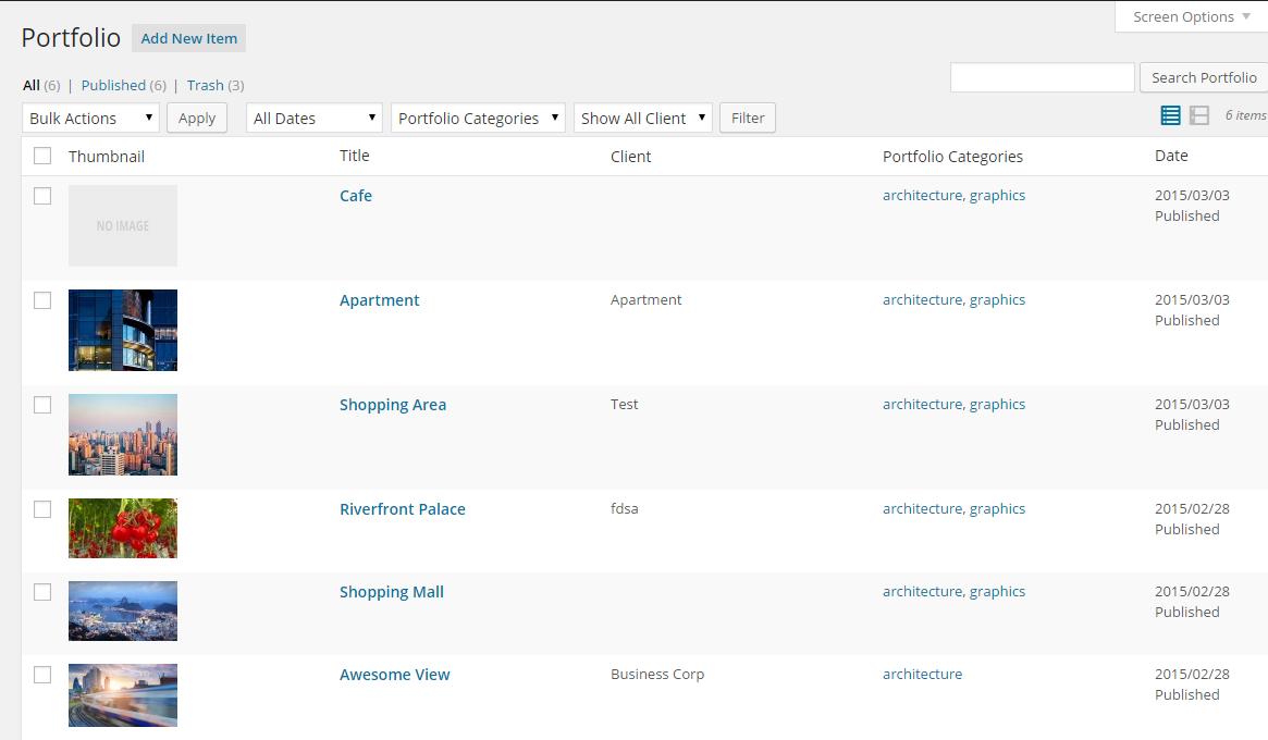 Portfolio Listing In Admin Area.