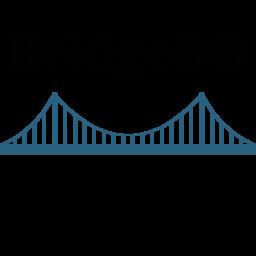 Plugins Categorized As Bridge Wordpress Org