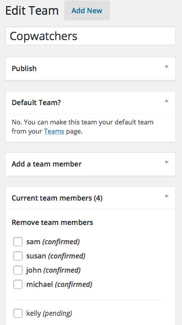 Screenshot showing team editing page