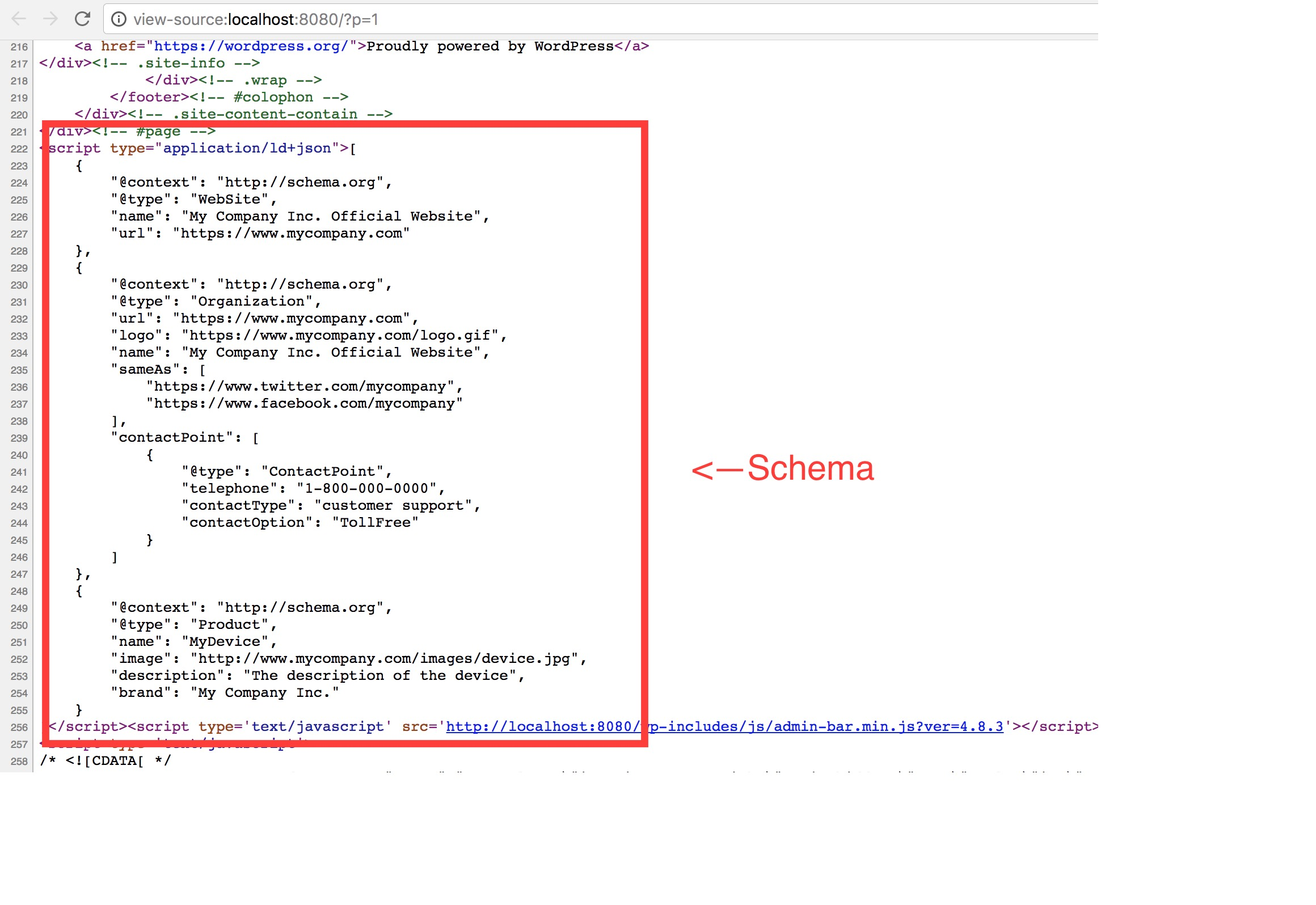 Example of a generated schema in the html source code