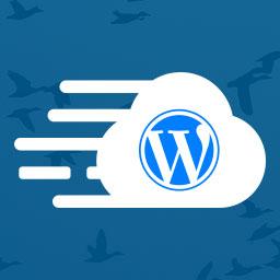 Wordpress Site Migration Plugin by Cloudways