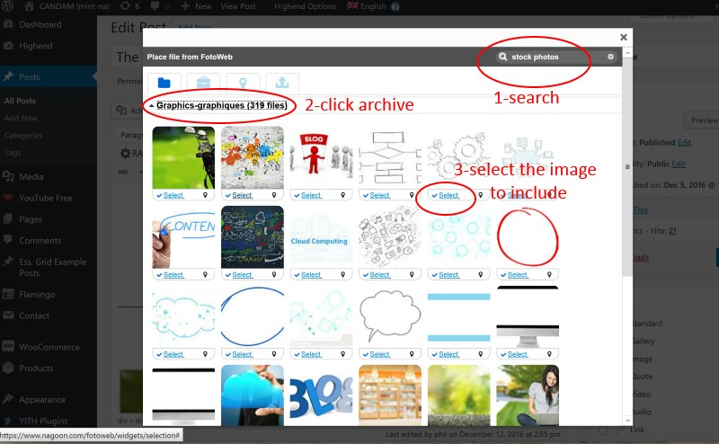 Fotoweb selection widget screen shot: search, preview and select the file to include in your post.