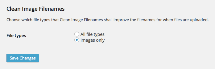 Easily choose between cleaning the filenames of all file types or images only.