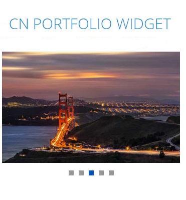 <p>Portfolio widget.</p>