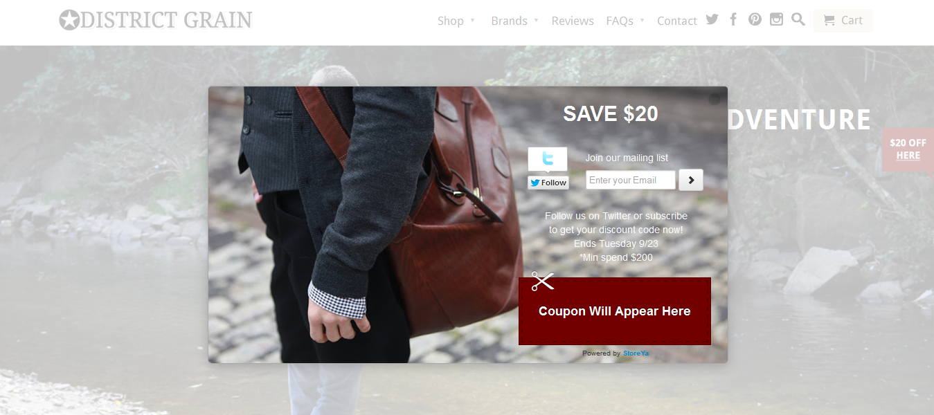 coupon-pop-for-wp screenshot 6