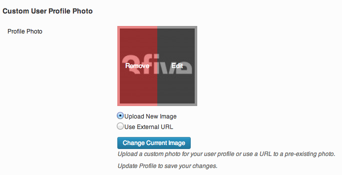 <p>On hover, Edit or Remove an uploaded image.</p>