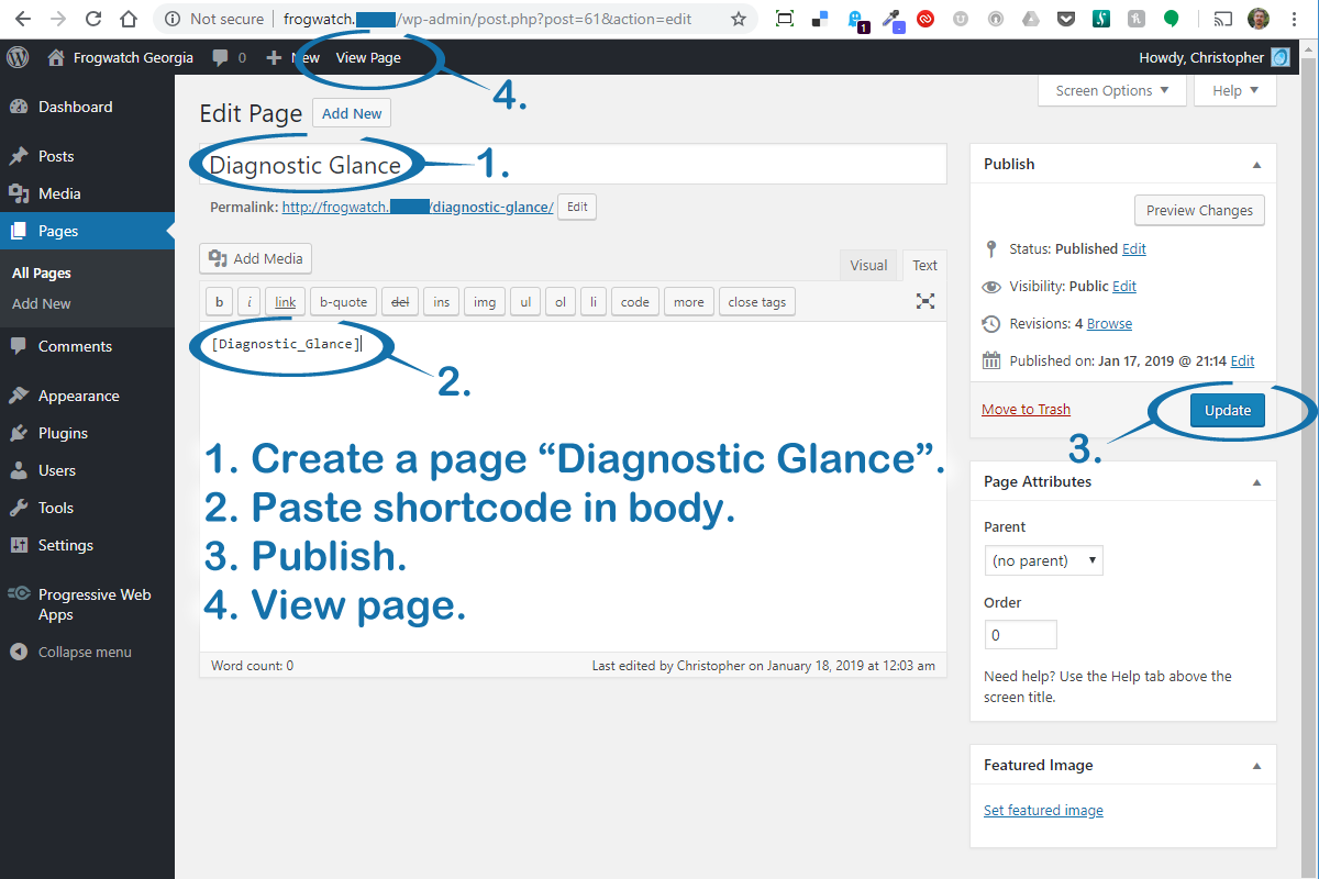 """To use the shortcode, create a page titled """"Diagnostic Glance"""" and paste the shortcode into the body. Publish and view the page."""