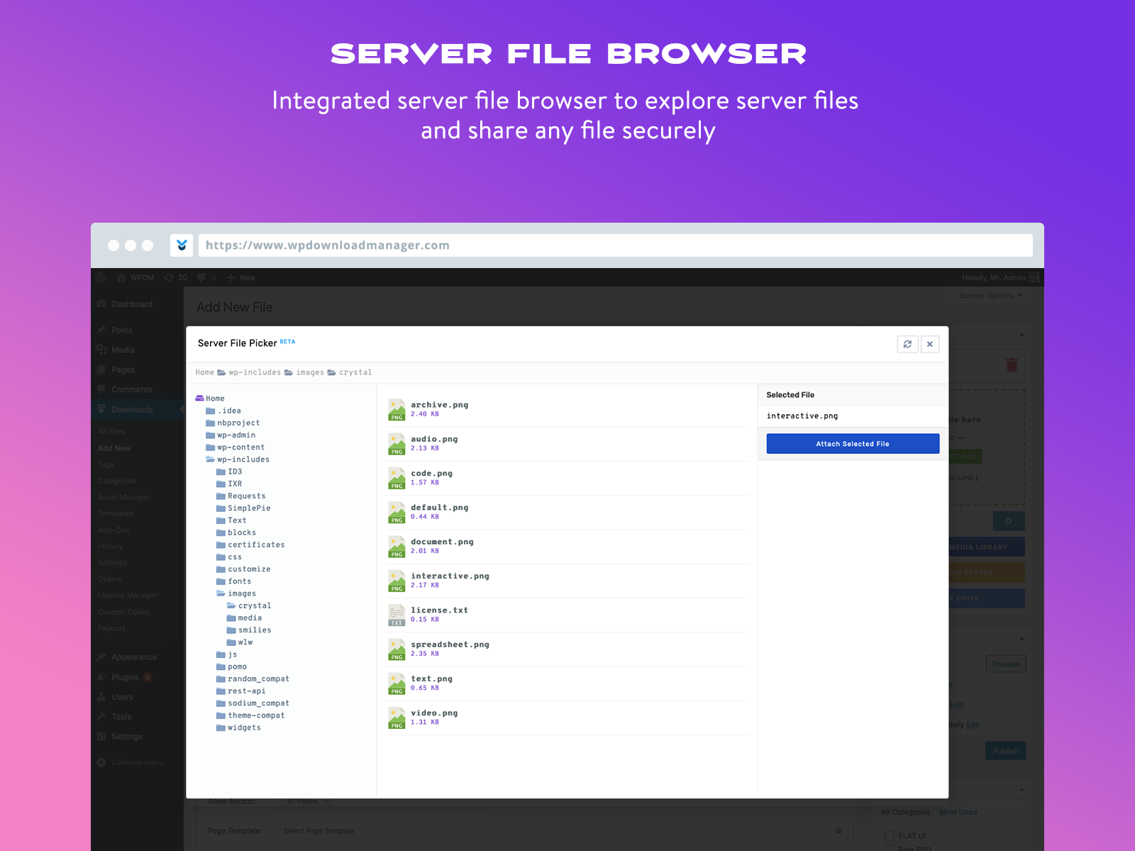 Server file browser