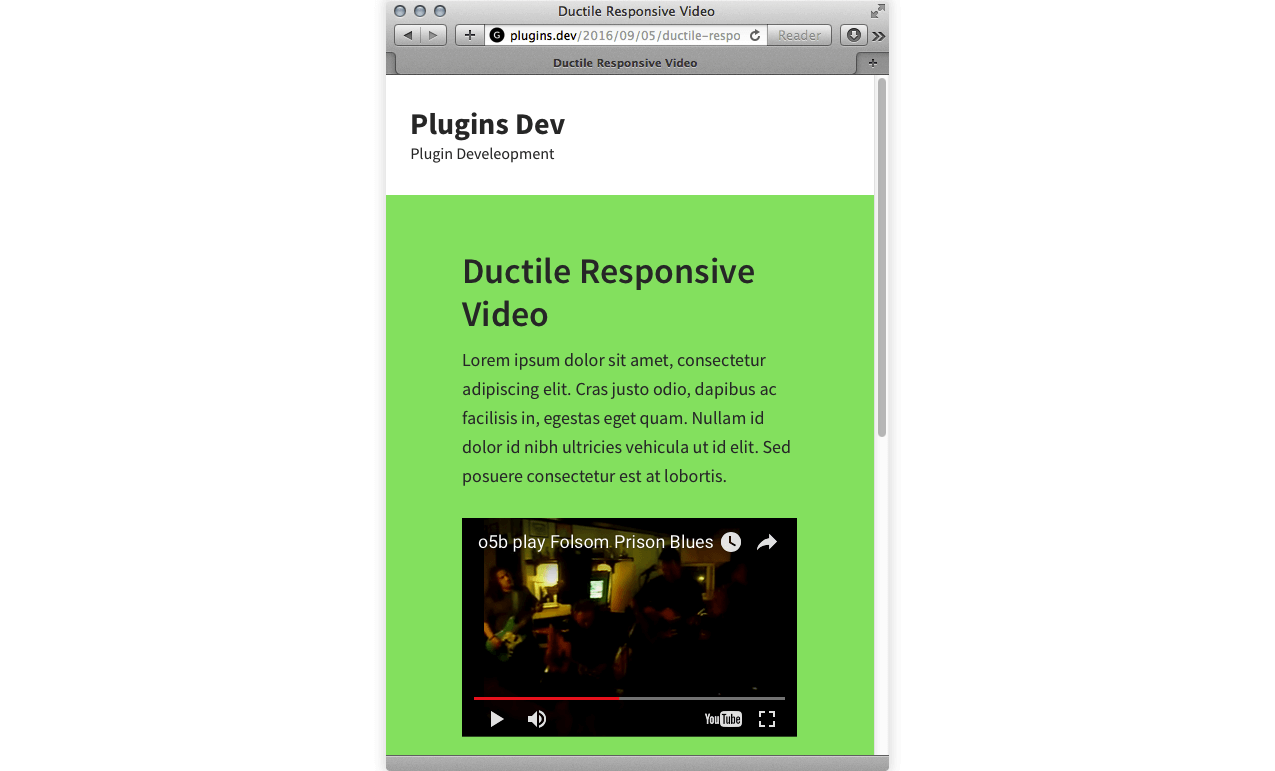 ductile-responsive-video screenshot 2