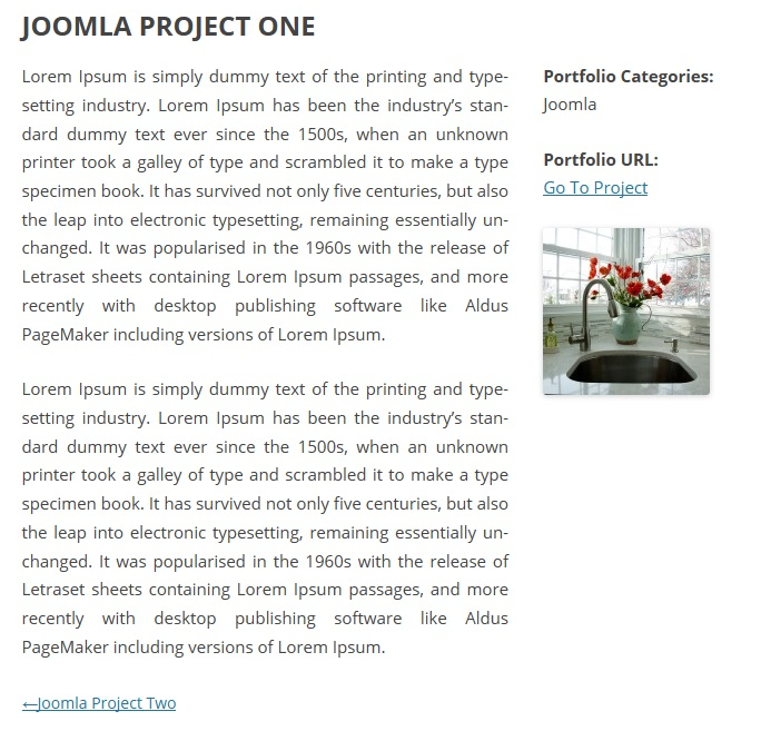 Portfolio/project Details page are show.