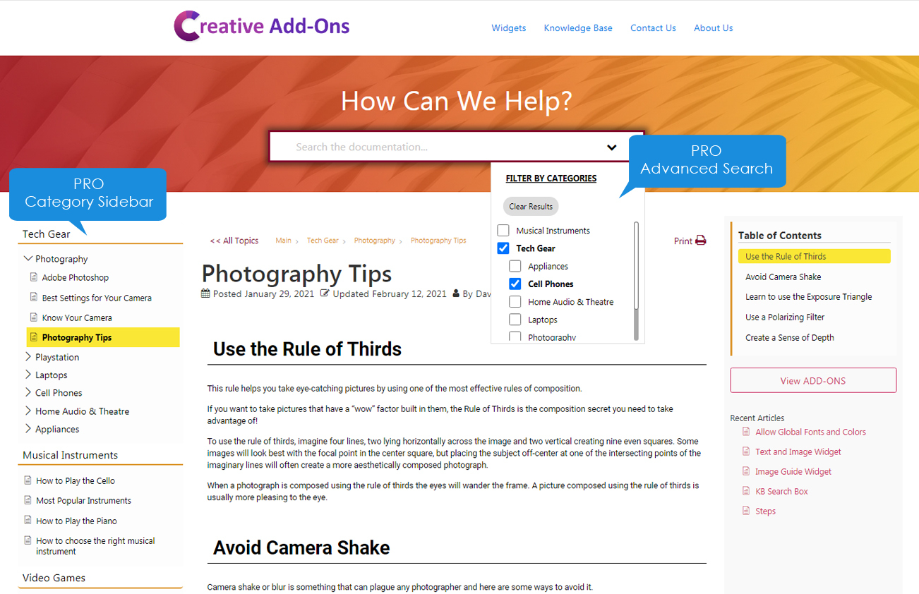 <p>PRO version: Advanced Search and Sidebar from Elegant Layouts</p>