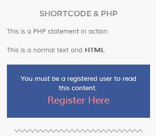 enable-shortcode-and-php-support-in-text-widget screenshot 3