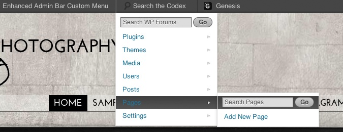 Menu view from the front-end of your site.