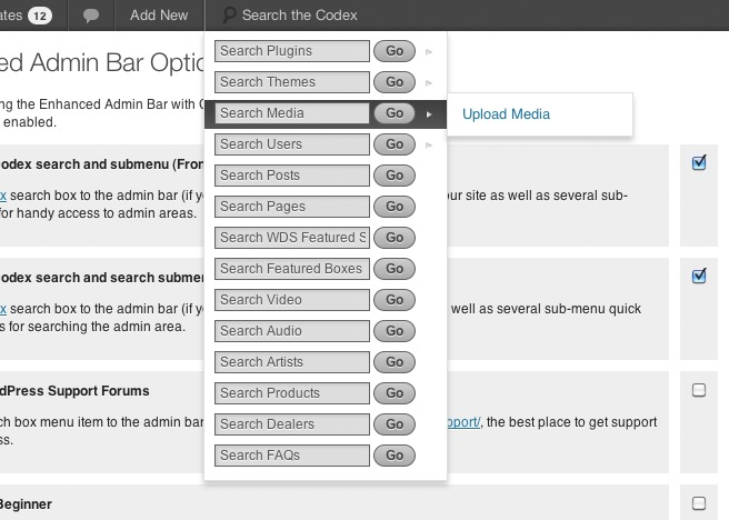 Menu view from WordPress Admin back-end.